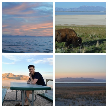 Salt Lake Collage